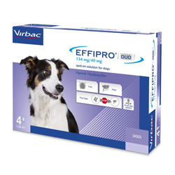 Effipro-duo-spot-on-medium-dog.jpg