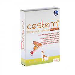 Cestem Flavor Tablets for Large Dogs