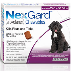 Nexgard Chewables for Large Dogs, Purple, 10.1 - 25 Kg (24.1-60lbs) 68mg