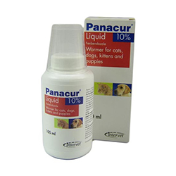 Panacur Oral Suspension for Dog
