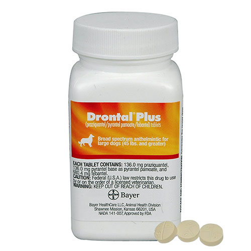 Drontal Plus for Medium Dogs 3.1 - 10 Kg