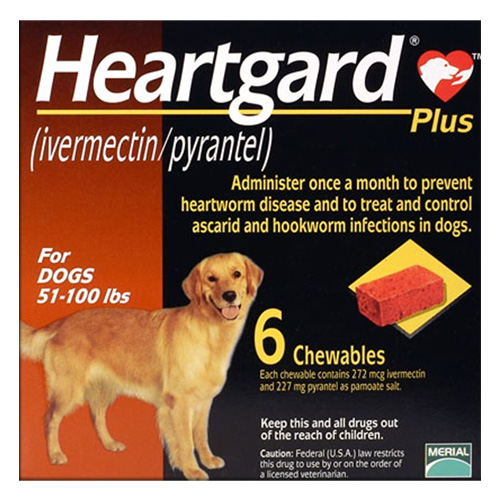 Heartgard Plus Chewables for Large Dogs, Brown, 23 - 45 Kg (51-100lbs)
