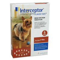 Interceptor for Dog