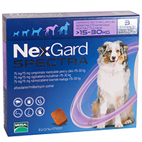 Nexgard Spectra Tab for Large Dogs, Purple, 15.1 - 30 Kg (33-66lbs)