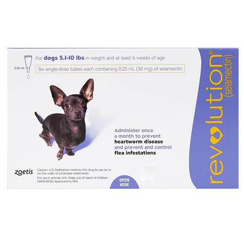Revolution for Very Small Dogs, Purple, 2.6 - 5 Kg (5.1-10lbs)